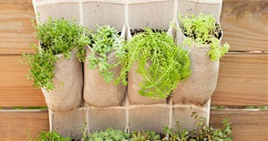 18 Amazing and Creative Vertical Garden Ideas