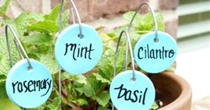 15 Cute and Easy DIY Garden Markers Ideas