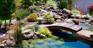 15 Gorgeous Water Garden & Pond Landscaping Ideas
