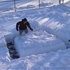 This dog knows a way better way to get through this snow maze.