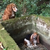 This dog watched over her best friend when she was stuck in a well for over a week.