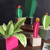 Spring Flowers for Prickly Black Thumbs: 7 Paper Plant & Cacti Projects