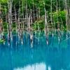 Blue Pond | Biei, Hokkaido, Japan by Daniel Lo Photography...
