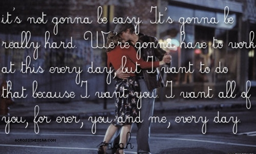 the notebook (the notebook)