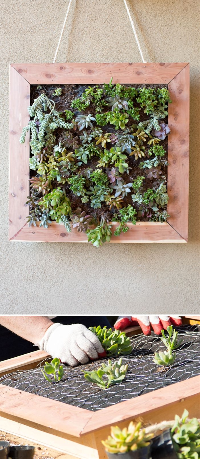 tlin Ketcham's recent backyard makeover for The Home Depot Blog's Patio Style Challenge series featured several DIY projects. Caitlin's the designer and blogger behind Desert Domicile, and here she has a tutorial for a vertical succulent garden that decorates her front porch.