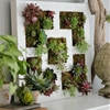 7 IKEA Hacks for Gorgeous Succulent Gardens