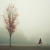 """The Leaf Thief"" by Elizabeth Gadd  (elizabethgadd.tumblr.com)"