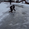 Bernese Mountain Dog gets crash course in the physics of ice.