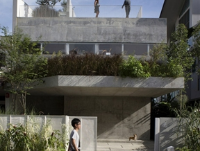 Formwerkz Architects' Terrace House is covered with plants inside and out
