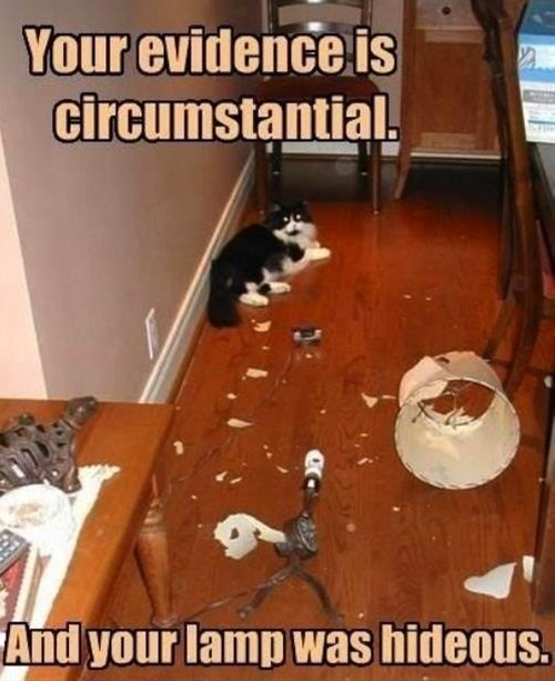Your evidence is circumstantial.