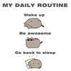 Ladies and gentlemen, my daily routine