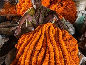 Kolkata Flower MarketKolkata, West Bengal, India. November...