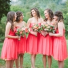 Coral Wedding at Mountain Magnolia Inn