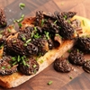 Morel Mushroom Tartine With Chives