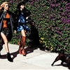 Just Cavalli Taps Langley Fox Hemingway for Rock Chic Fall Ads