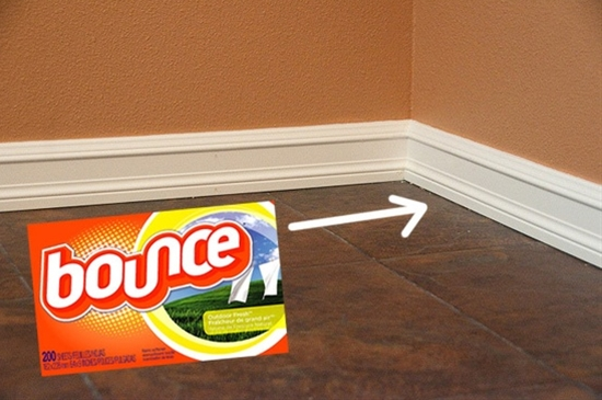 Dryer sheet to help keep your baseboards dust free.