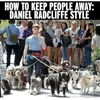 Keeping people away like a boss 😎 #9gag