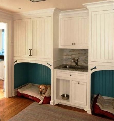 If I ever have pets... the beds and food in laundry room.