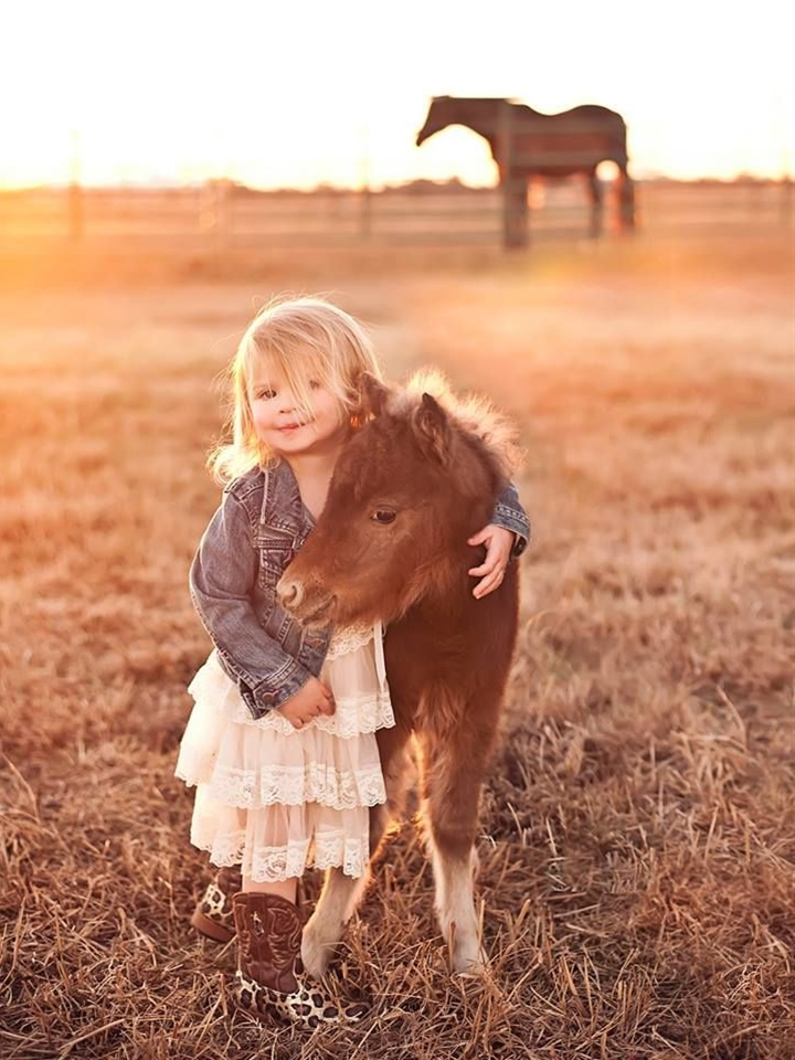 My family's newborn mini horse and cute little girl pose for photo shoot.