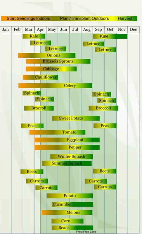 I found this planting schedule for my zone online and I wonder how accurate it is. I am really interested more on the maturity lenght.