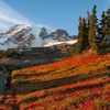 Autumn at Mt. Rainier by count.cernin.net