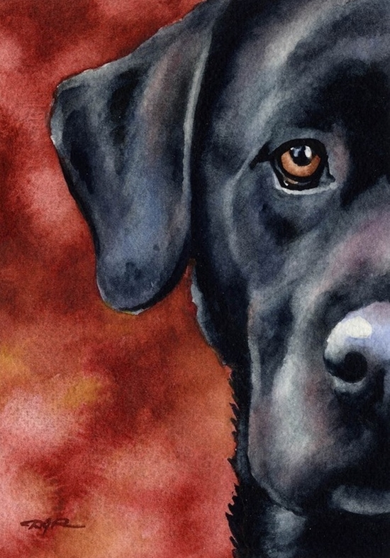 black lab artwork