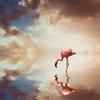 DREAM by Ruri Svidler