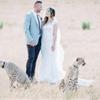 Summer Destination Wedding in Cape Town