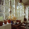 The Sun Room At My HomeOakland, CA 2014 by...