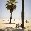 venice beach, los angeles by joe magowan ...