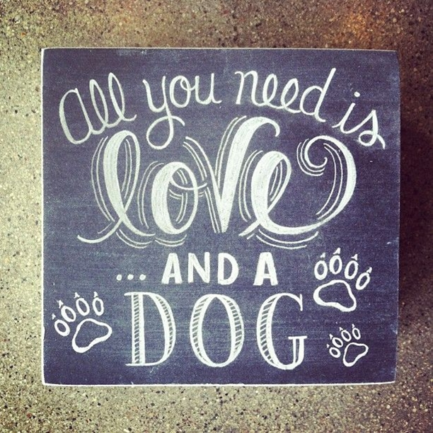 All you need is love... and a dog. www.aspca.org/asdm