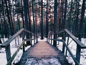 Tampere, Finland by Lucas Marcomini...