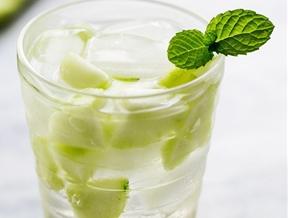 """Cucumber Mint """"Shrub"""" Soda"""