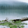Overcast Morning, Devils LakePentax 6x7 / Kodak Portra 160 by...