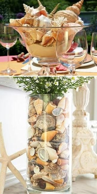 A variety of unique and rare sea shells offers great ideas for creative sea shell crafts and table centerpiece ideas for any occasion or everyday life.