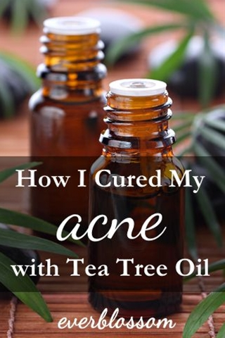 Here are a few different ways you can use tea tree oil for acne:\n\n  Mix a few drops (2-6 or so depending on the severity of the situation!) with your regular moisturizer. Avoid your eyes!\n Add a few drops to your regular cleanser. Again, be careful not to get it in your eyes!\n Mix 1/2 cup of sugar, 1/4 cup of sesame or olive oil, 1 tablespoon of honey and 10-ish drops of tea tree oil for a acne-fighting scrub. This is good for run of the mill breakouts, but could be a little too harsh for cystic acne. Tea tree oil and honey are even  natural preservatives so you can keep this in a jar right in your medicine cabinet.\n For acne on your body, you can add tea tree oil to your bath.\n Add 5 drops of tea tree oil to 1/4 cup of plain yogurt and apply as a mask.