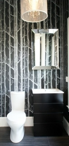 I'm still loving the cole and son birch tree wallpaper. Think it would really show off the high ceilings in your powder. I think it could look really dramatic in black.