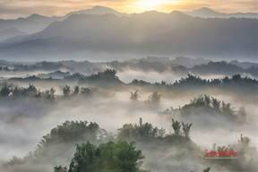 Golden mist in erliaoCheck out my personal portfolio website! by...