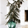 Best of Holiday Decor, Remodelista Edition