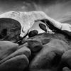 arch rock, joshua treecpleblowjan/2015 by cpleblow...