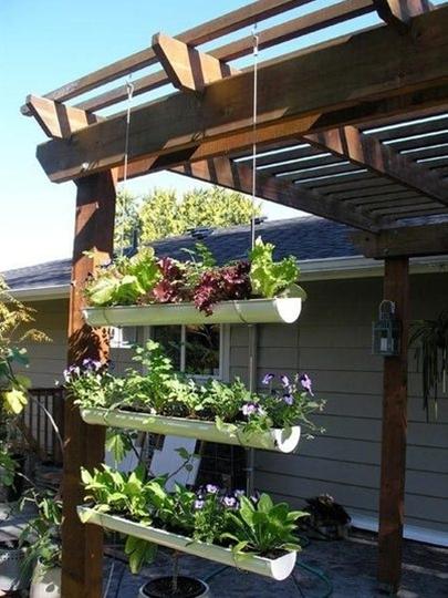 Hanging gutter garden!