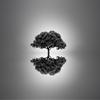 Silence by Josep Sumalla