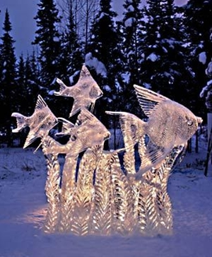 The International Ice Sculpting Championship, a yearly event features large ice sculptures placed around the city, such as this remarkable school of Angel Fish.