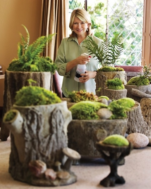 Moss gardens are simple to construct. Put a layer of crushed stone or gravel in the bottom of a vessel for drainage. (Wide, shallow containers look best.) Top that with a layer of potting soil, and then add moss, stones, and plants in any arrangement that strikes your fancy.