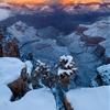 Grand Canyon Winter Wonderland 1 by Nhut Pham