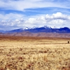 The Distance is CallingGreat Sand Dunes National Park,...