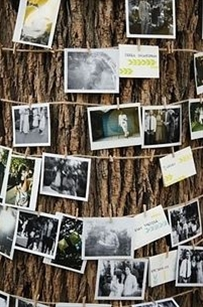 great idea o make unusual wedding
