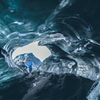 Ice Cave - early summer in Iceland is a daring time to find an...