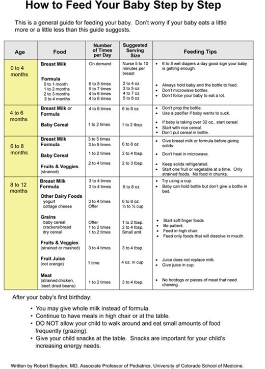 info about feeding schedules and guidelines - good start but don't think I will ever be so strict!