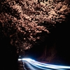 The Immutable Tree[Published in the National Geographic Yourshot...